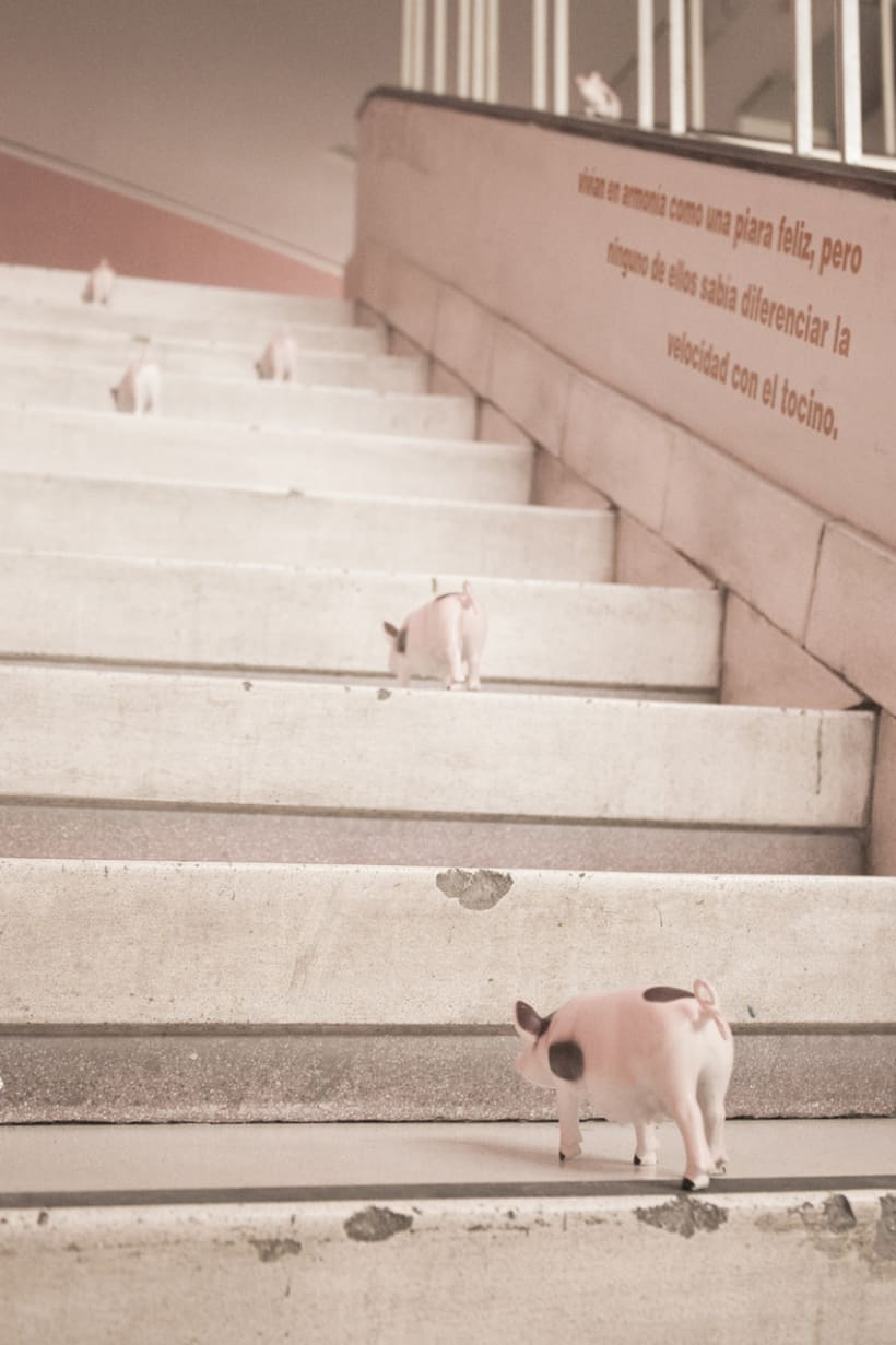 Fotografía - Le hamon inferno 4