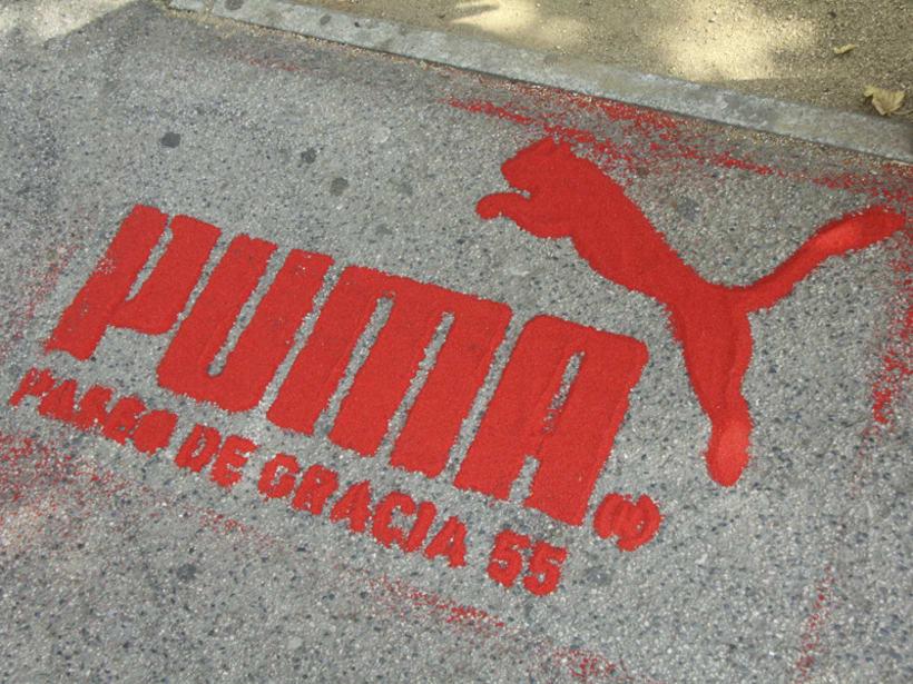 Puma 14