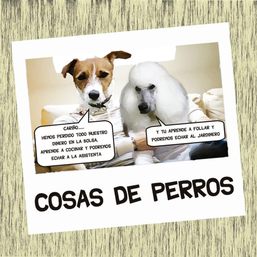 cosas de perros 5