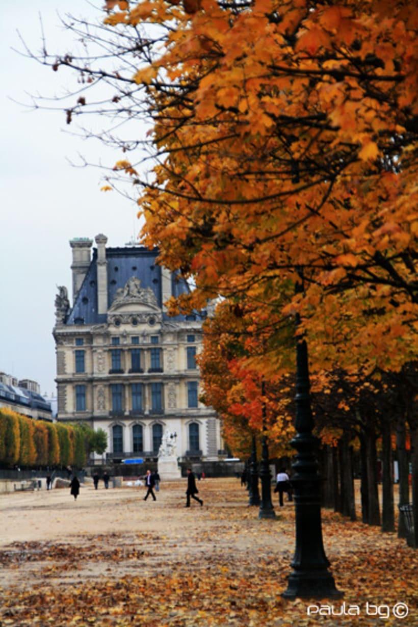 Photo: Paris automne (Paris autumn) 16
