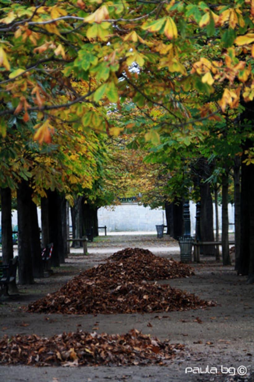 Photo: Paris automne (Paris autumn) 13