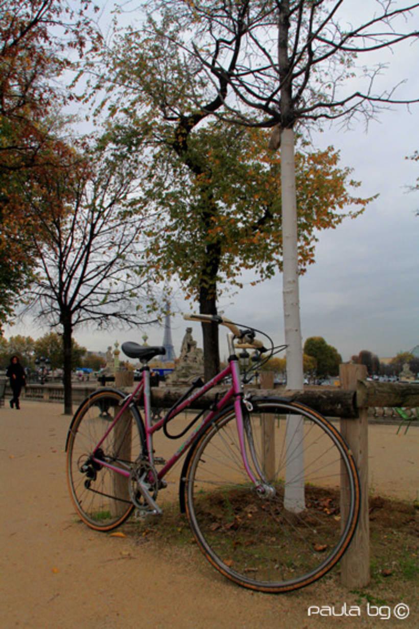 Photo: Paris automne (Paris autumn) 1