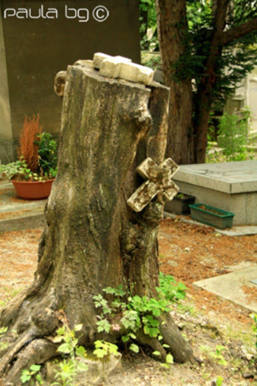 Photo: cimetière Paris 8