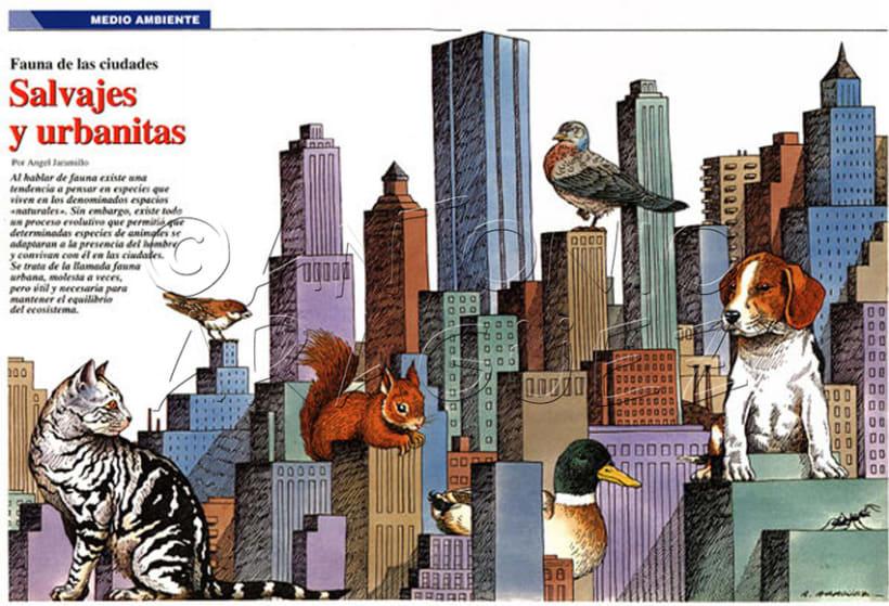 Ilustraciones Aragüez 9