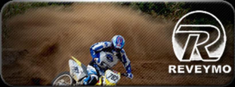 banners motor 3