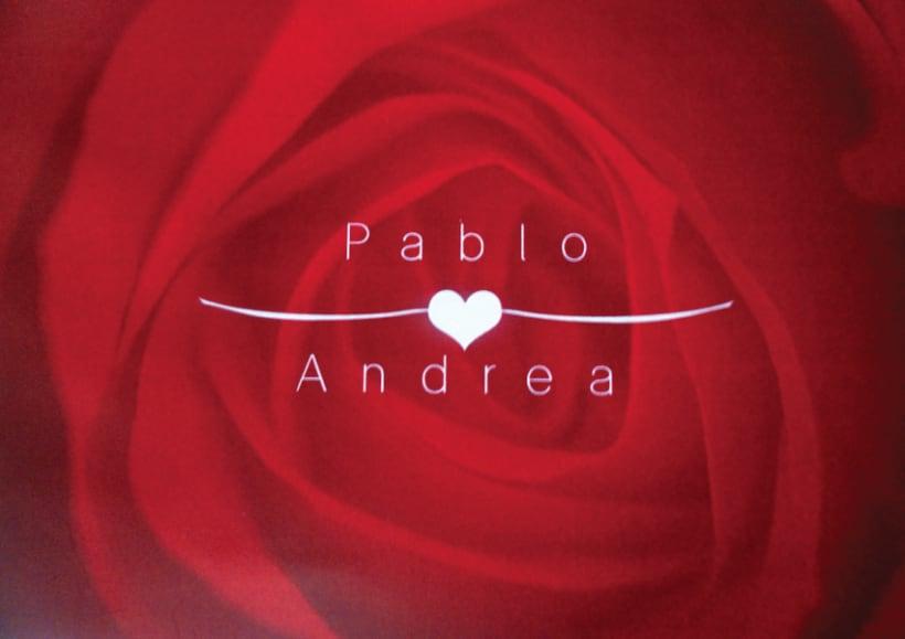 Boda Pablo & Andrea 1