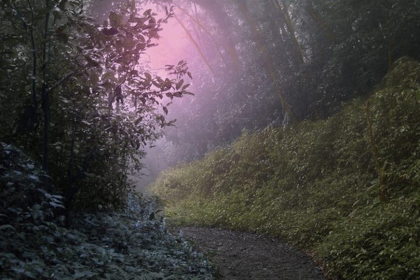 La Naturaleza es Fantasía 2
