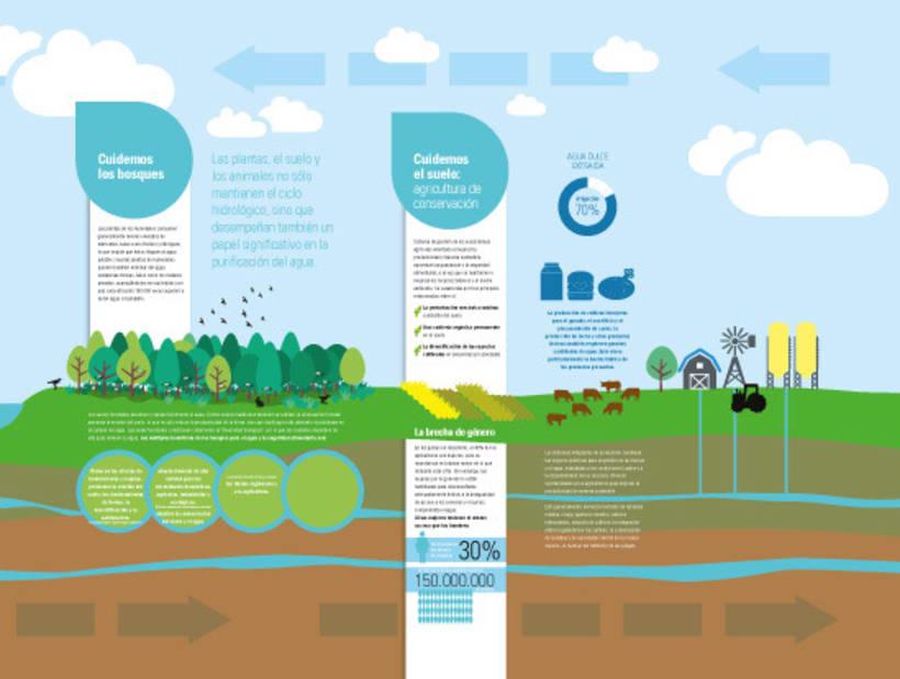 Mural del ciclo del agua 5