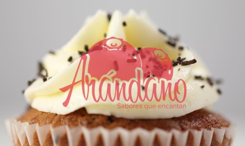 Arándano   Branding 1