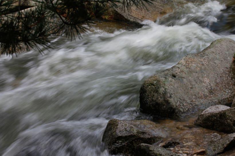 Reportaje Fotográfico Sierra de Madrid 8