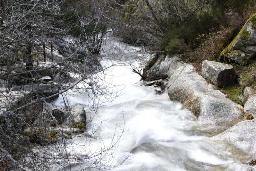 Reportaje Fotográfico Sierra de Madrid 6