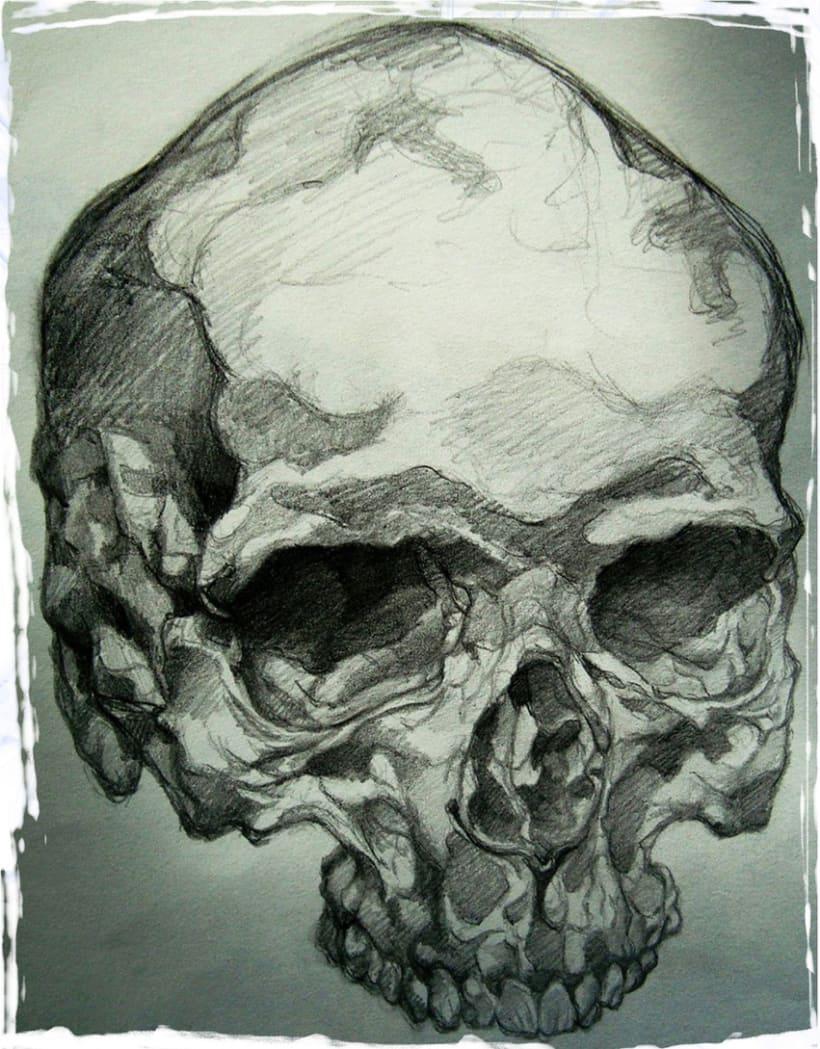 Bones / Huesos  1