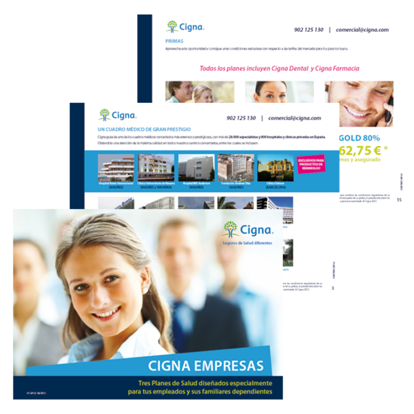 Gráfico y web para Cigna Health Insurance 17