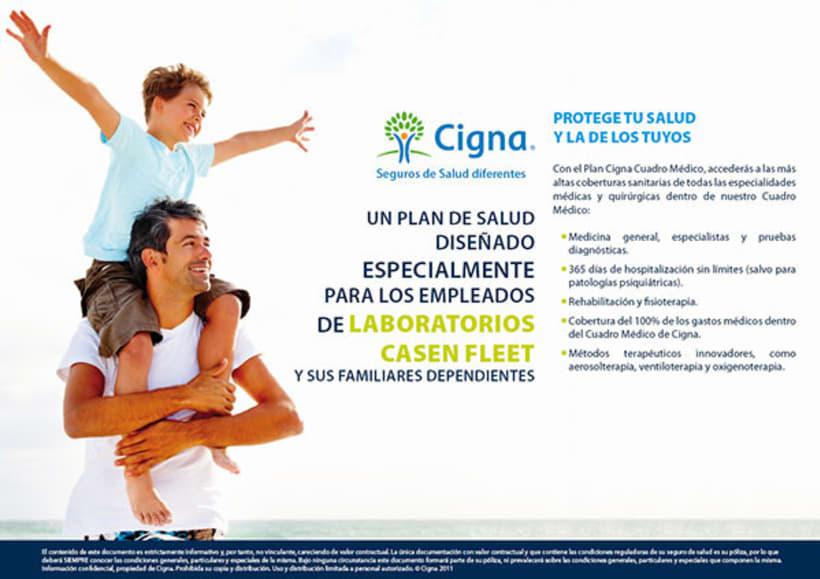Gráfico y web para Cigna Health Insurance 13