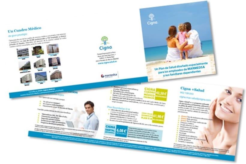 Gráfico y web para Cigna Health Insurance 10