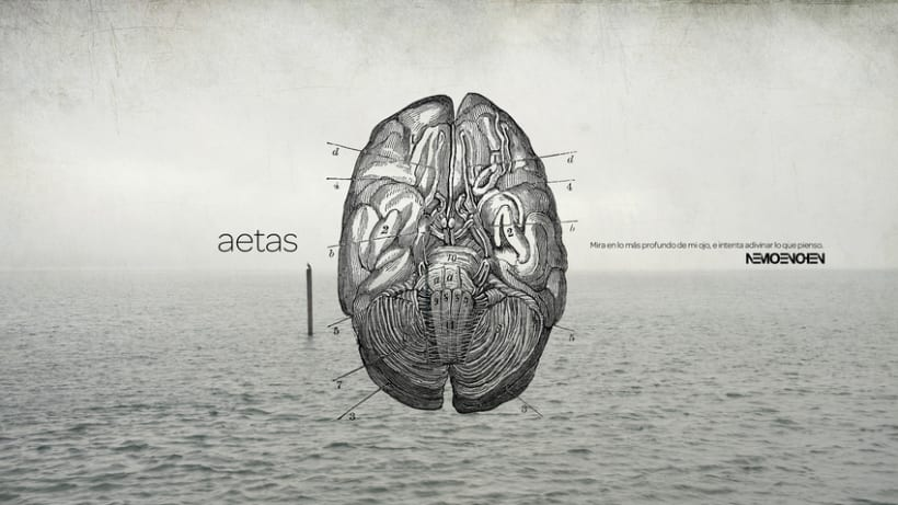Wallpapers Aetas 2