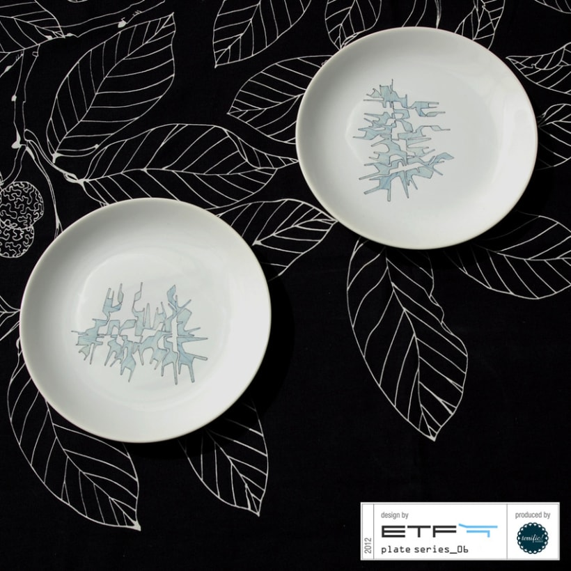 ETF: Plate Series_2012 4