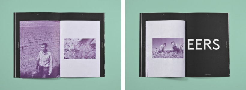 Tierra y lluvia. Catálogo Bodegas Castell d'Age 6