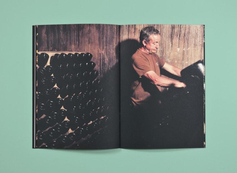 Tierra y lluvia. Catálogo Bodegas Castell d'Age 10