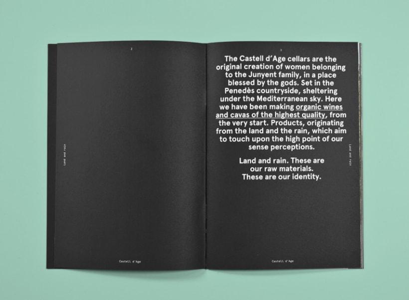 Tierra y lluvia. Catálogo Bodegas Castell d'Age 12