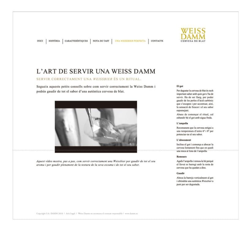 Pàgina web 7