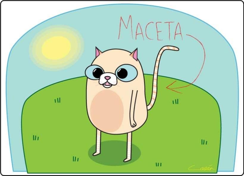 Cat Stuff 13