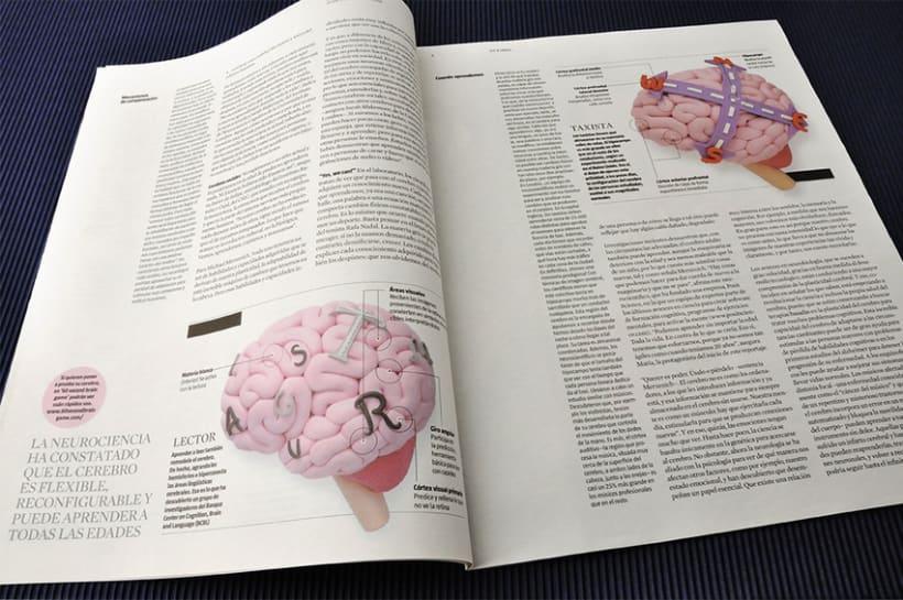 Cerebro plástico 13