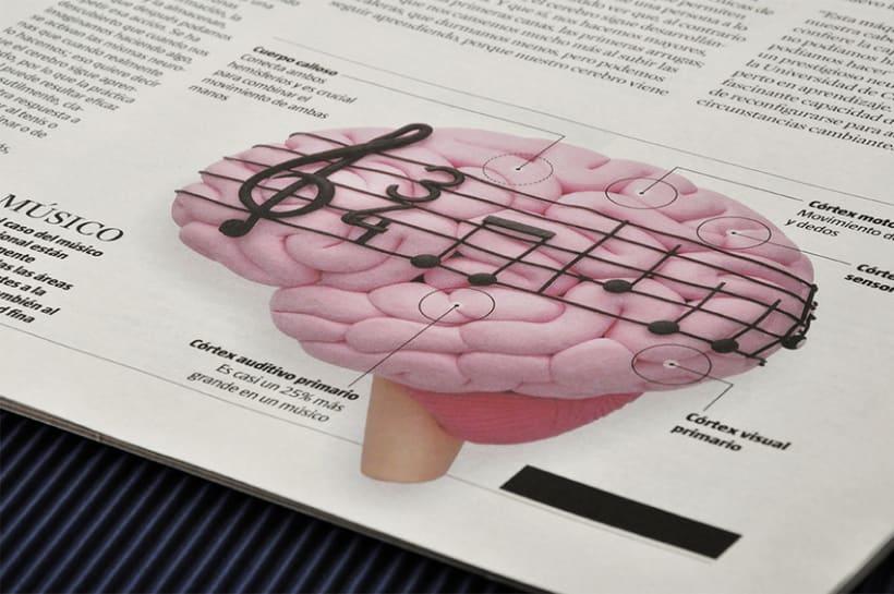 Cerebro plástico 9