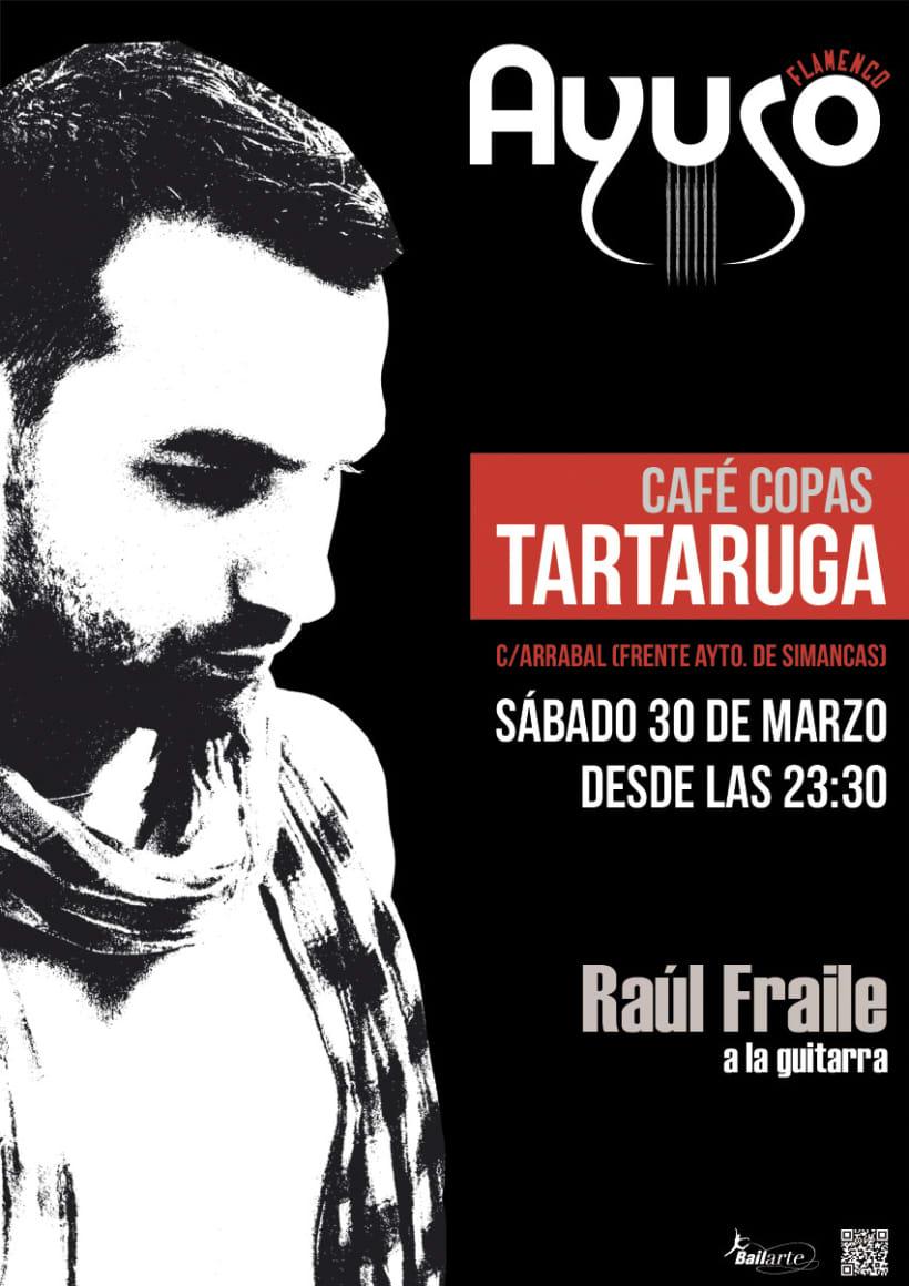 Ayuso Flamenco Tartaruga 1