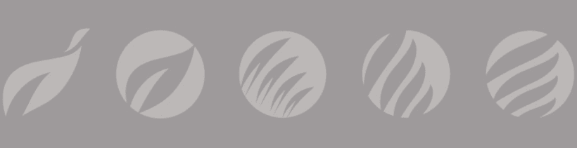 Logotipo y Marca 2