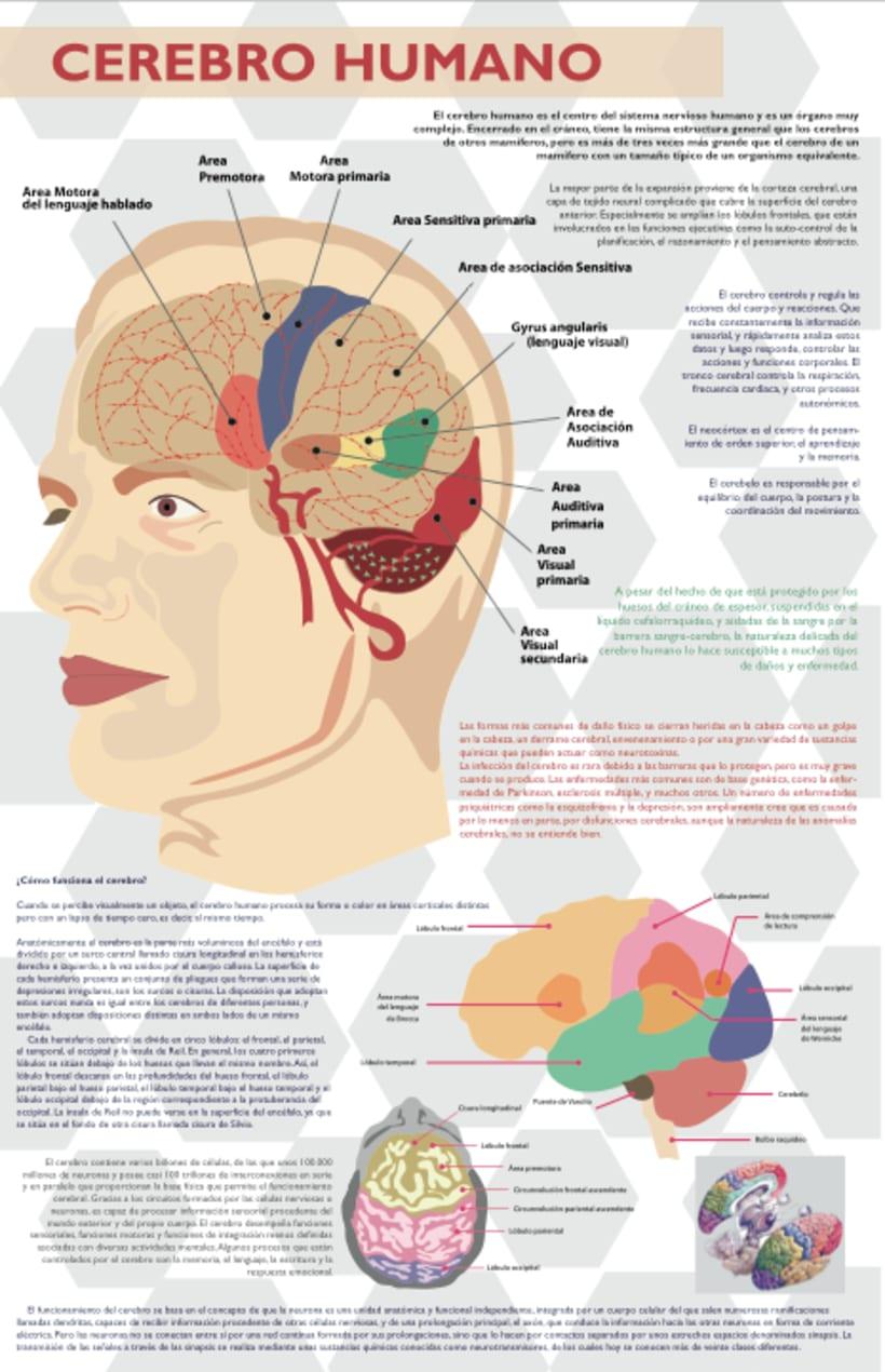 Editorial e Infografía 3