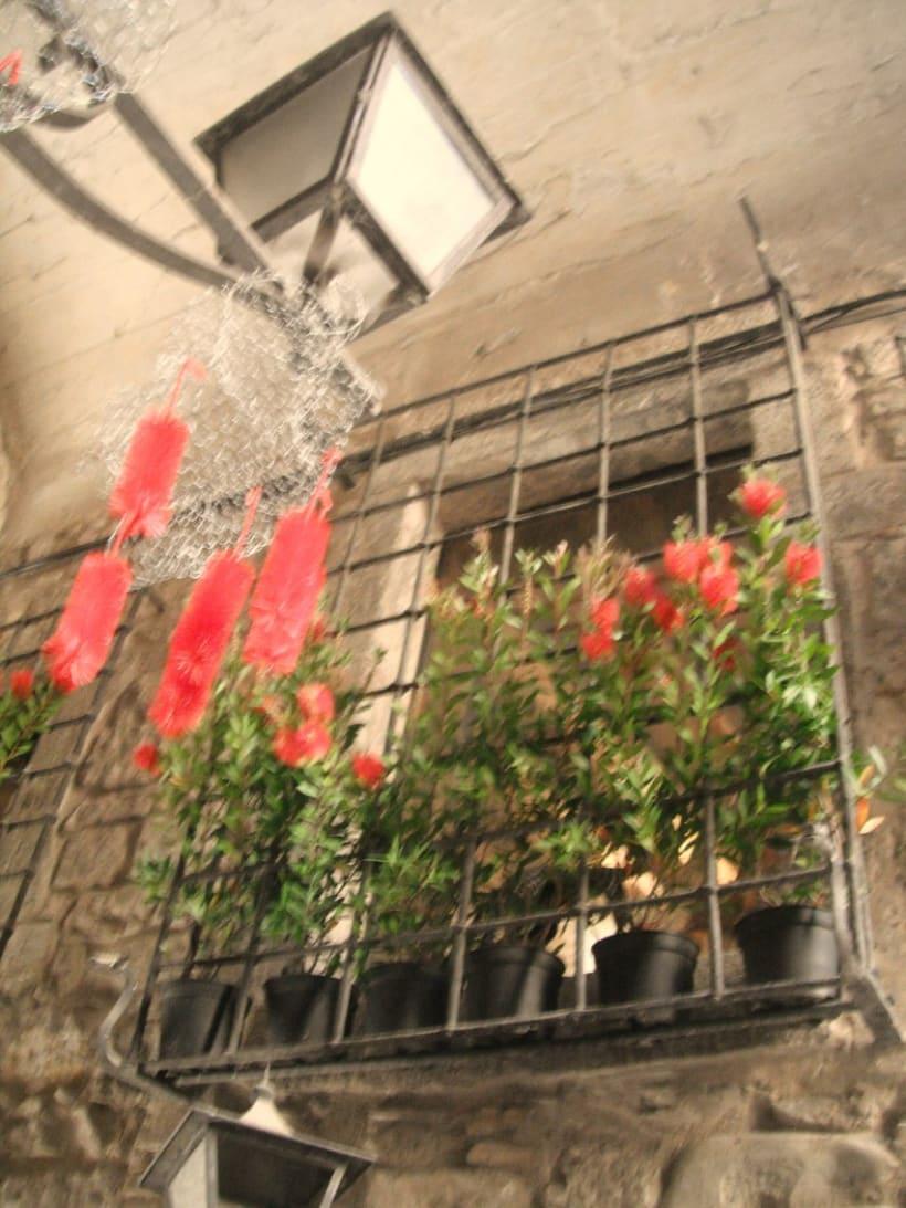 Girona Temps de flors 2011 2