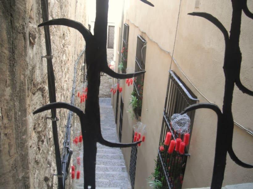 Girona Temps de flors 2011 1