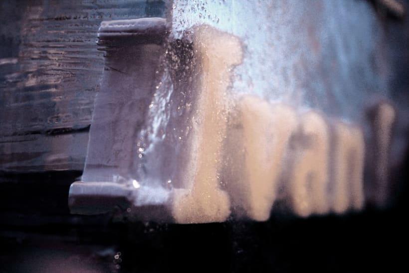 Escultura de hielo / ice sculpture 13