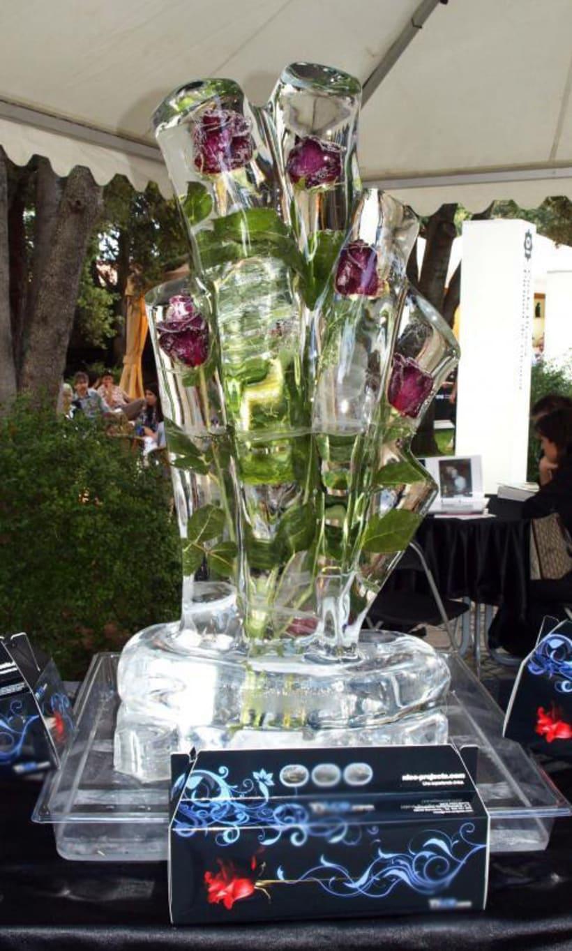 Escultura de hielo / ice sculpture 10