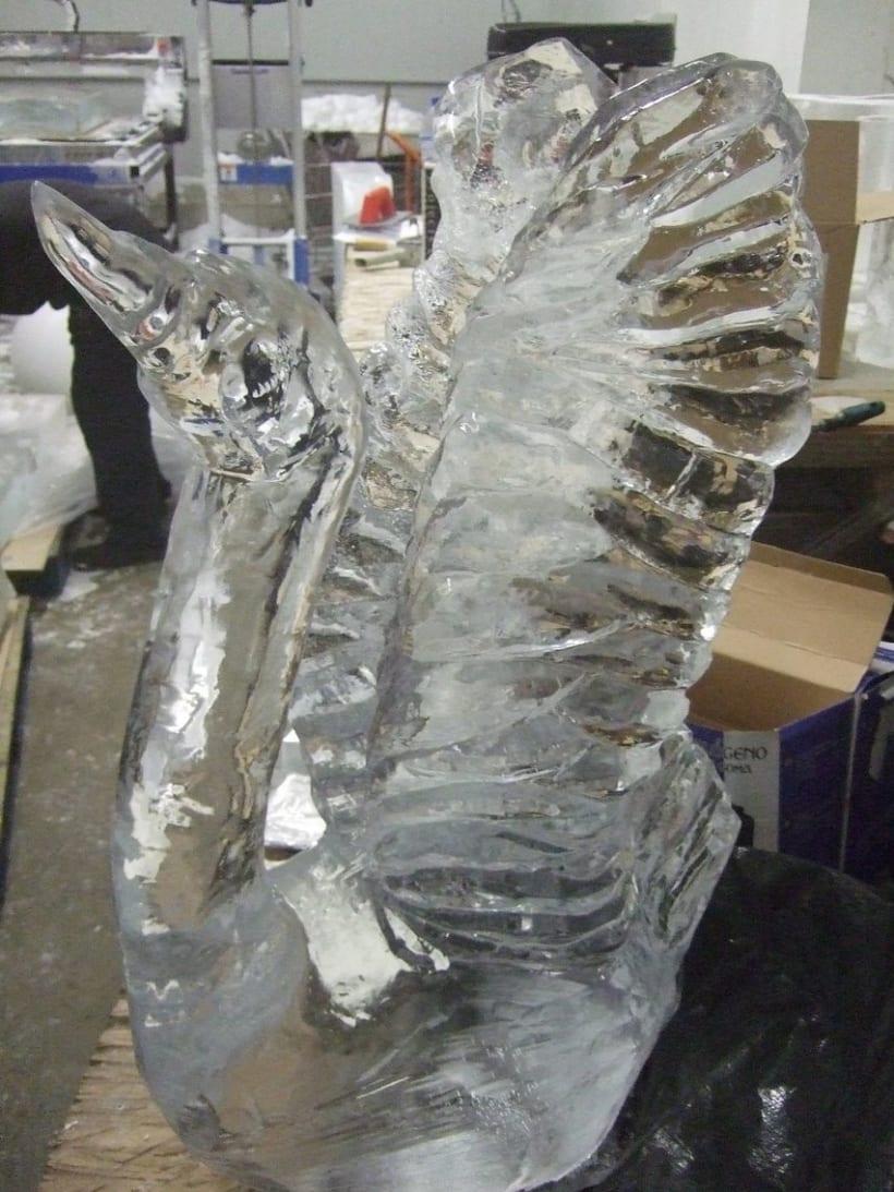 Escultura de hielo / ice sculpture 11