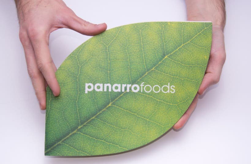 Panarrofoods 1