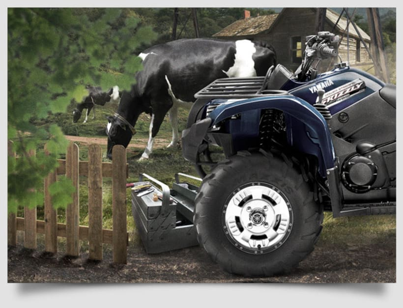 YAMAHA GRIZZLY 450 3