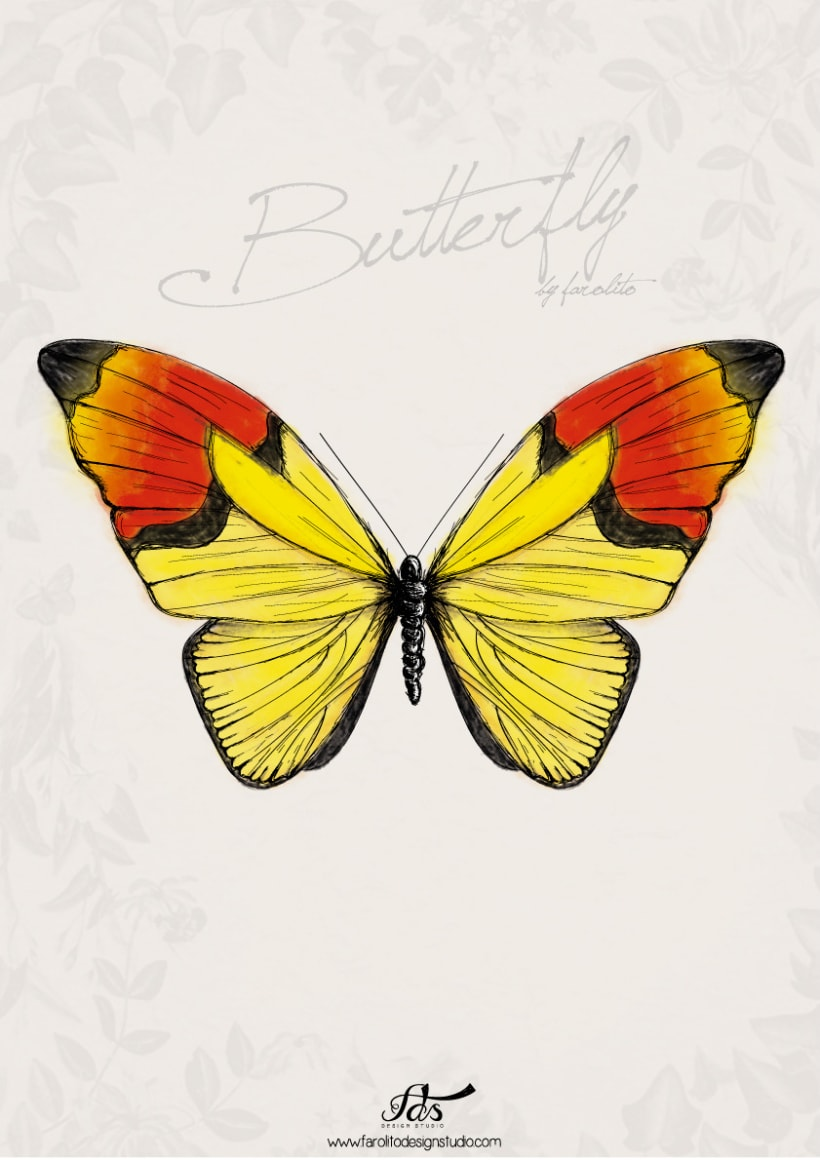 Butterfly posters 1