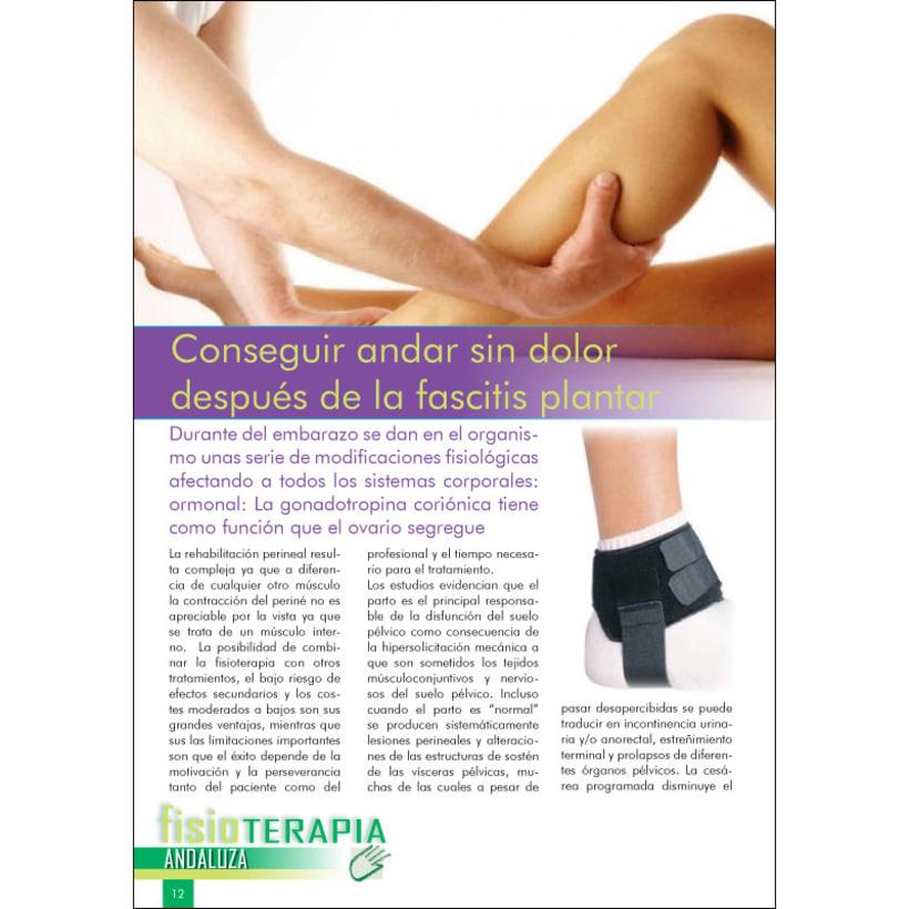 Revista fisioterapia andaluza 2