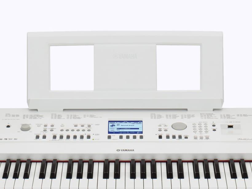 DGX 650 2