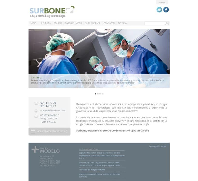 Desarrollo WEB: Surbone 2