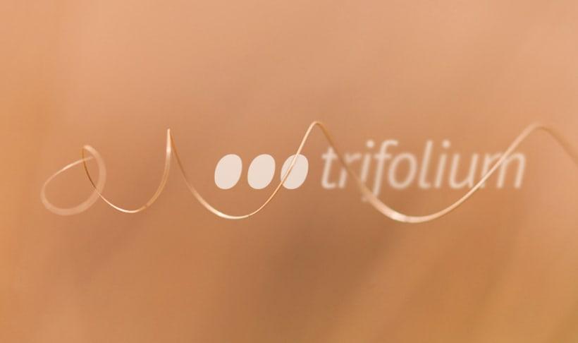 Trifolium 2