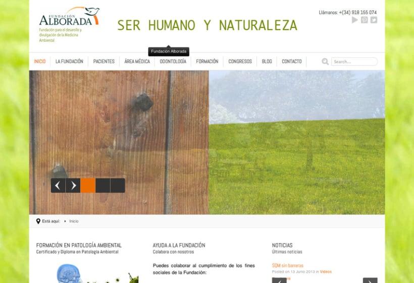 Fundación Alborada 2