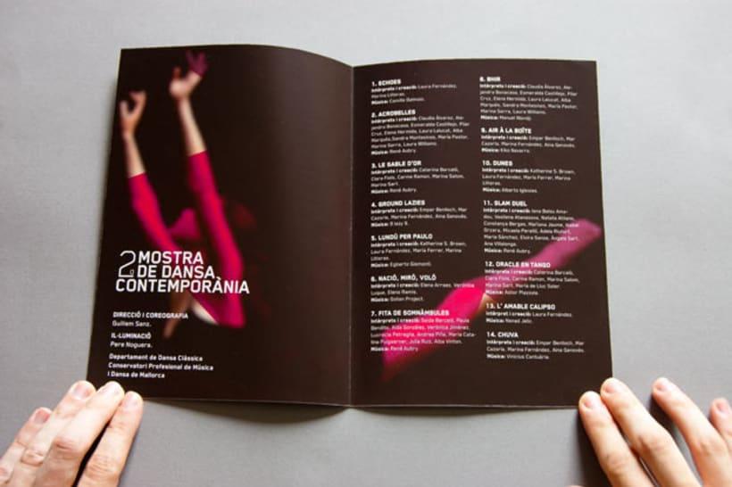 Mostra de Dansa 2011 4