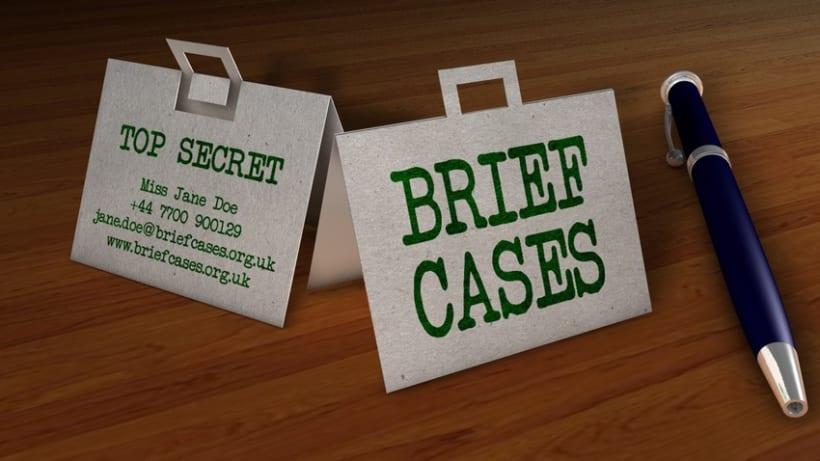 Brief Cases 2
