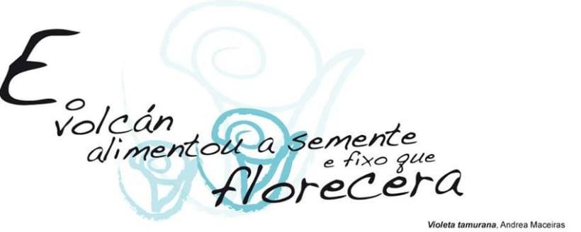 Letras Galegas  2