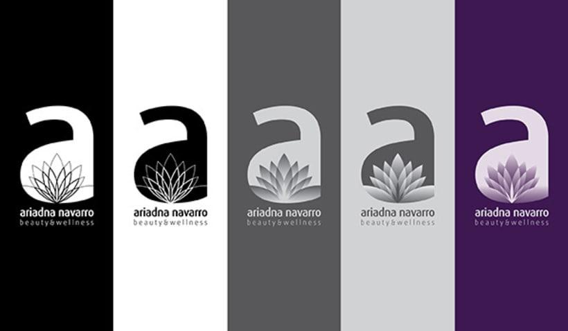 Identidad corporativa - AN 4