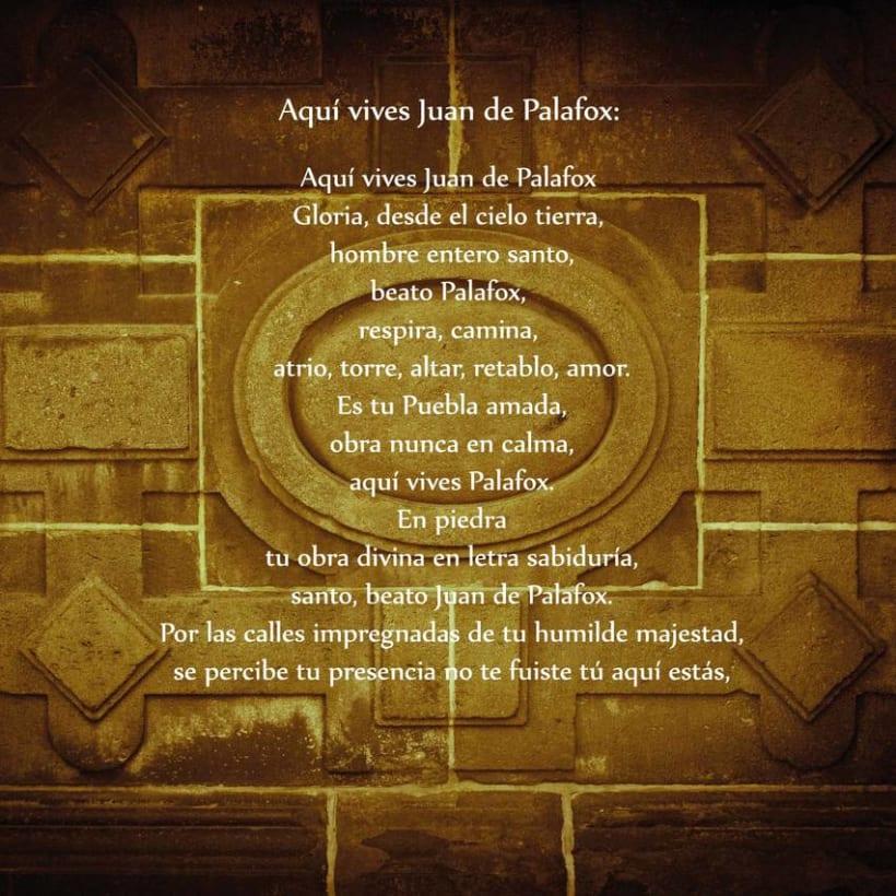 Palafox 4