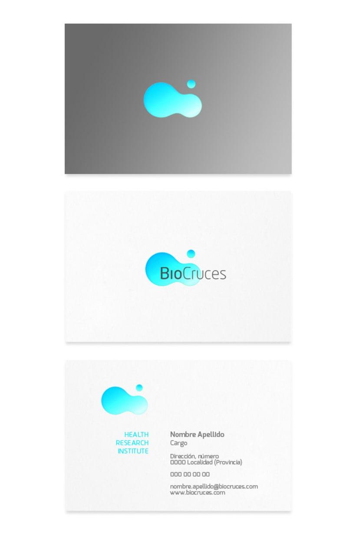 BioCruces 4